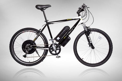 Cyclotricity Stealth 500W 29er mountain ebike